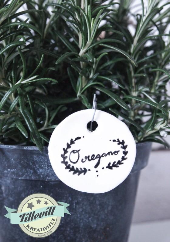 Växtetikett - Oregano
